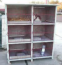 Clapier b ton 6 cases longueur 70 cm pour lapins - Clapier lapin beton ...